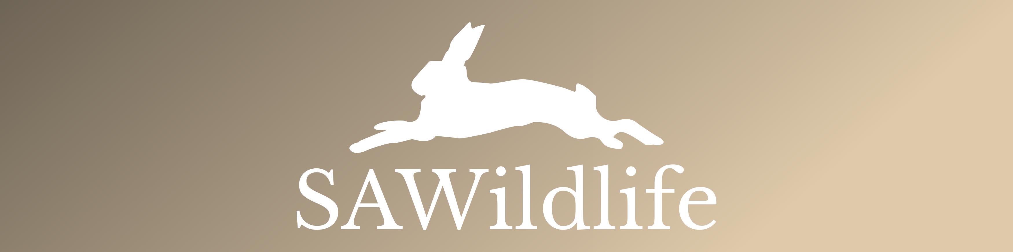 My Wildlife Photography Journey
